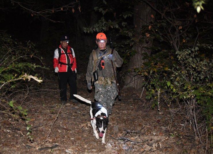 A hunter searches for wild boars on Mount Hongbok in Uijeongbu, Gyeonggi Province, in October 2019. Korea Times file