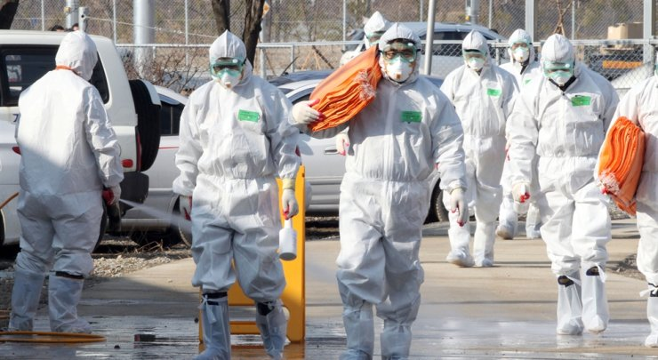 Over 400,000 chickens and ducks have been culled in livestock farms within a 3 kilometer radius of a duck farm in Jeongup, North Jeolla Province, after H5N8 avian influenza was found during a pre-shipment test from the farm, Nov. 26. Yonhap