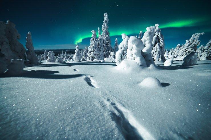 The Aurora Borealis in northern Sweden. / courtesy of Anton Eriksson Photography
