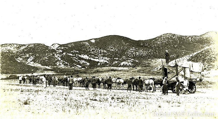 Getting goods and machinery to the mining concession was no easy matter. There were few roads and the company often had to rely upon large teams of oxen and ponies for transportation. Circa 1905. Robert Neff Collection (Courtesy of Lower Family)