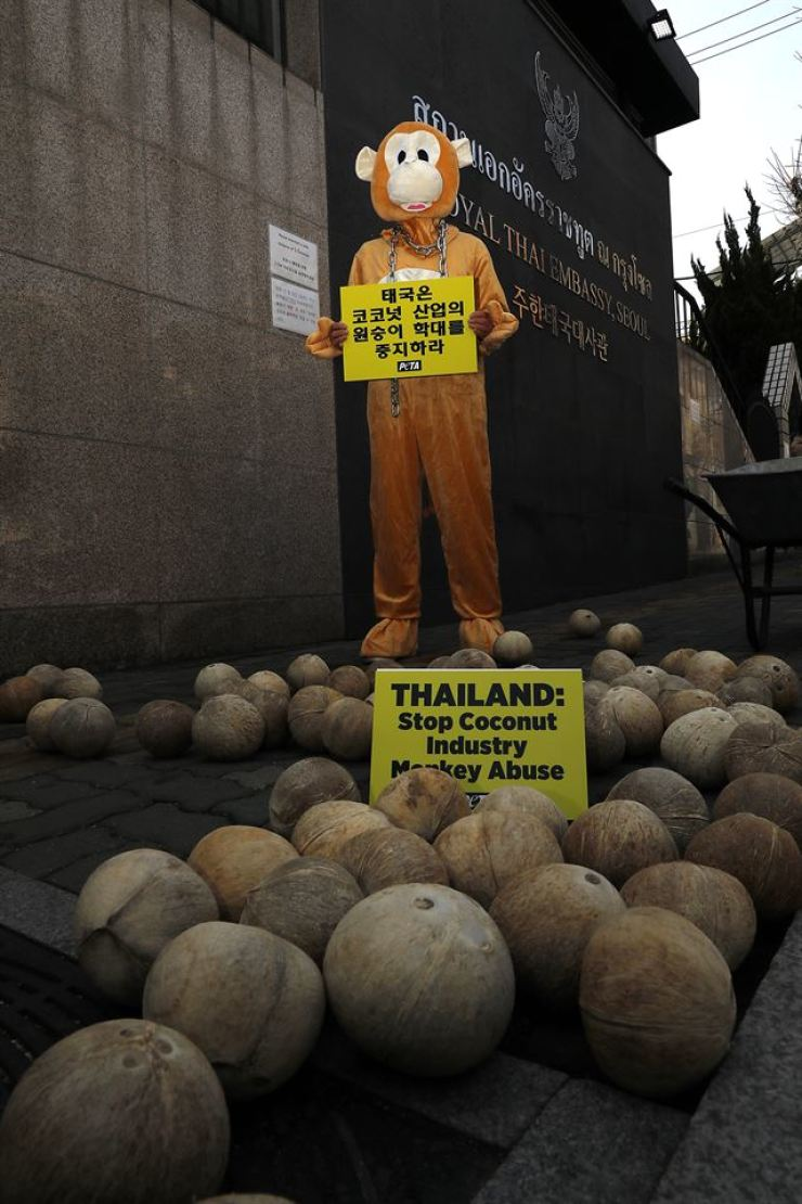Local animal rights activists in collaboration with People for the Ethical Treatment of Animals (PETA) hold a coconut-dumping protest in front of Royal Thai Embassy in Seoul, Friday. Korea Times photo by Shim Hyun-chul