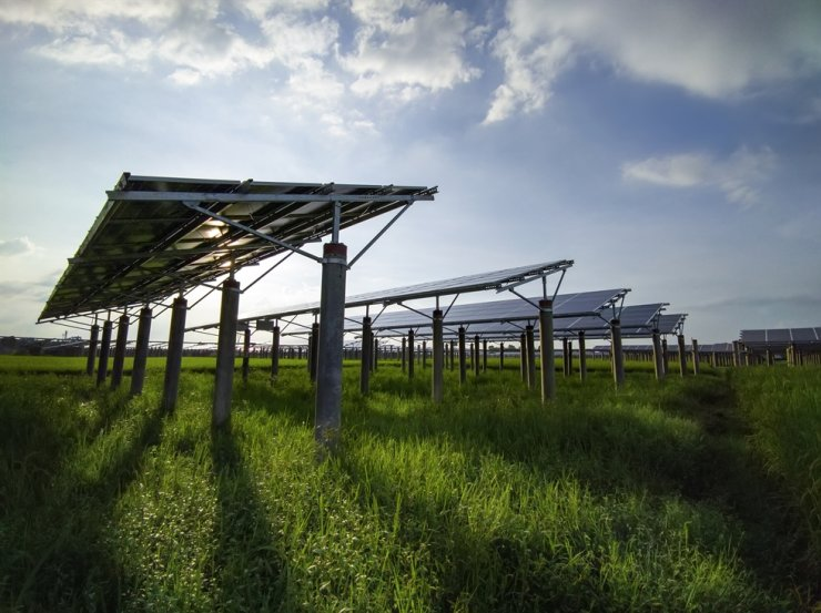 Agro-photovoltaic panels set up on grassy fields / gettyimagesbank