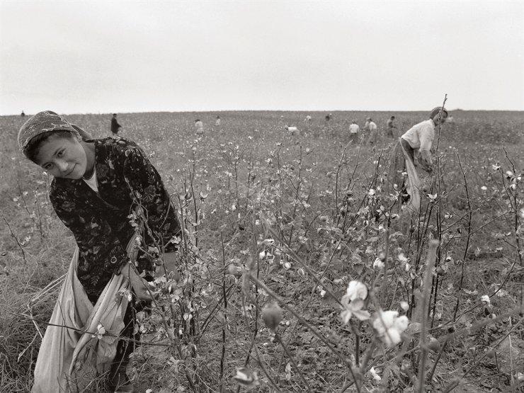 A woman works in a cotton field in Uzbekistan, in this 2002 photo taken by Kim Ji-youn. Courtesy of Noonbit Publishing