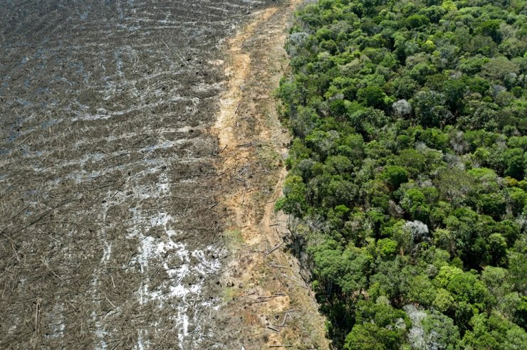 In this August 7, 2020, file photo, shows an aerial view of a deforested area close to Sinop, Mato Grosso State, Brazil. AFP-Yonhap