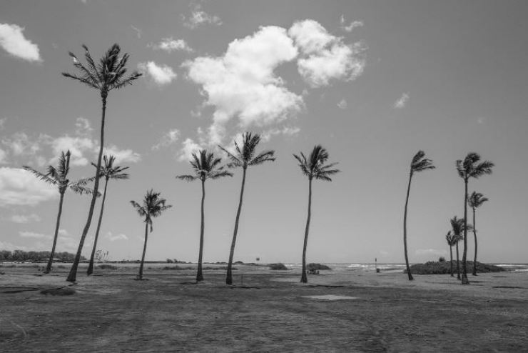 'US,' a black-and-white photo by Kang Seung-yoon (Yooyeon) exhibited in the 'Korean Eye 2020: Creativity and Daydream' exhibition / Courtesy of Parallel Contemporary Art (PCA)