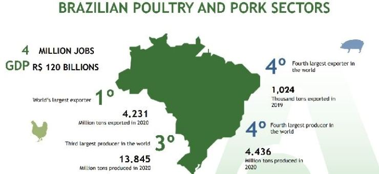 Statistics regarding Brazil's poultry and pork sectors / Courtesy of the ABPA