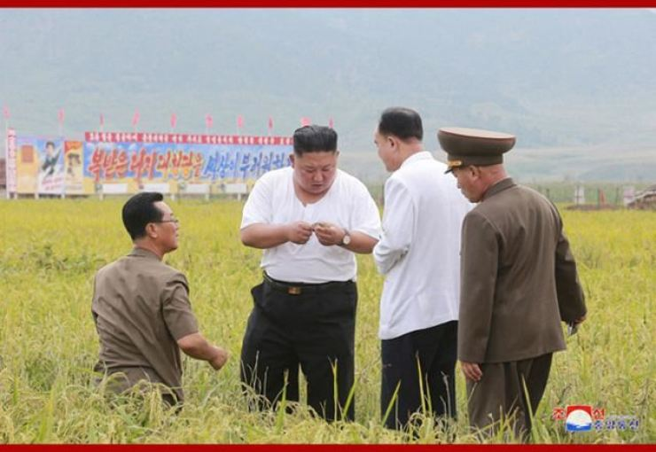 In this 2020 September file photo released by the Korean Central News Agency, North Korean leader Kim Jong-un examines rice paddy that was damaged by flood in North Hwanghae Province, North Korea. Yonhap