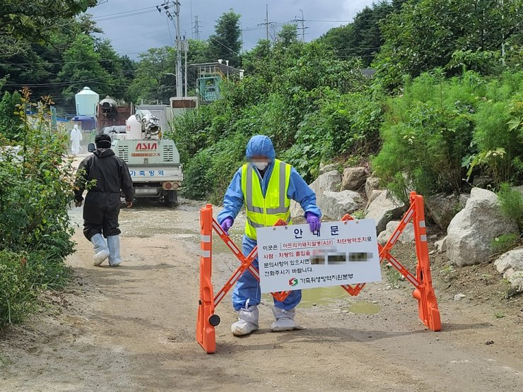 In this Aug. 8 file photo, a quarantine authority worker blocks entrance of a farm in Goseong County, Gangwon Province, where pigs were confirmed to be infected with African swine fever. Yonhap