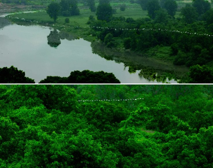Scenes from Jun So-jung's 'Green Screen' (2021) / Courtesy of the artist and CIRCA