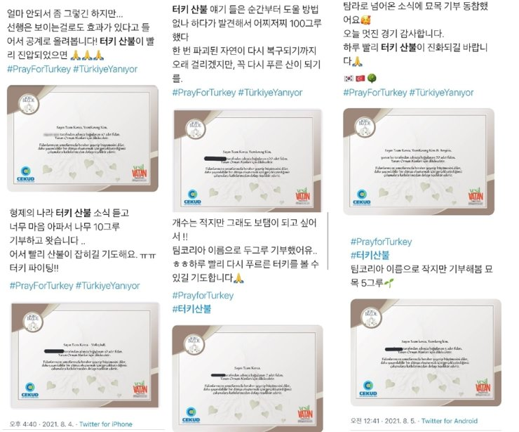 Koreans share posts that certify that they have donated seedlings for Turkey's post-fire restoration. Screenshot from Twitter