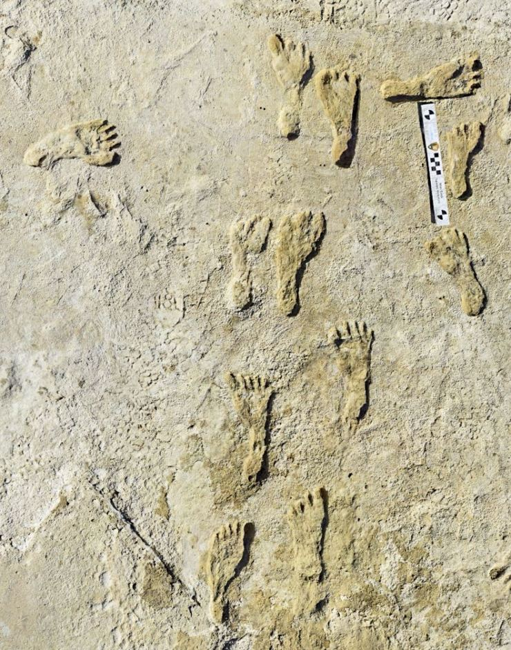 This undated photo made available by the National Park Service in September shows fossilized human fossilized footprints at the White Sands National Park in New Mexico. AP-Yonhap