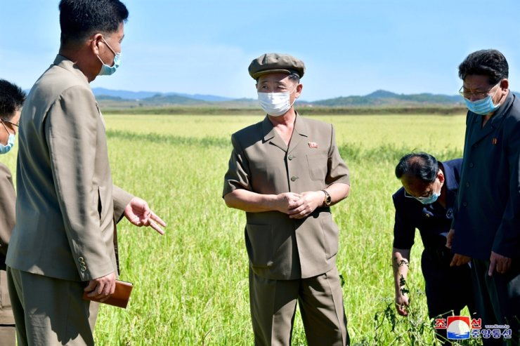 In this photo released by North Korea's Korean Central News Agency, Sept. 15, North Korean Premier Kim Tok-hun makes field inspection visit to a rural area. Yonhap
