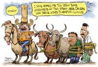 Texas abortion cowboy