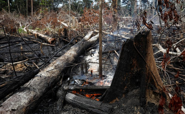 A tract of Amazon jungle burns as it is being cleared by loggers and farmers in Novo Airao, Amazonas state, Brazil August 21, 2019. Reuters