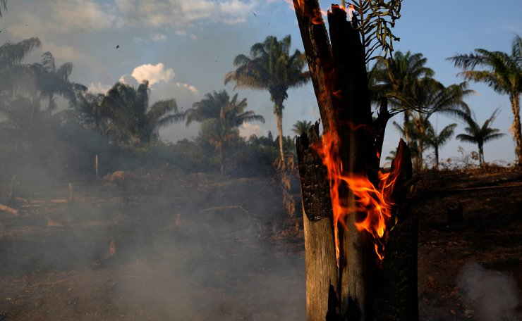 A tract of Amazon jungle is seen burning as it is being cleared by loggers and farmers in Iranduba, Amazonas state, Brazil August 20, 2019. Reuters