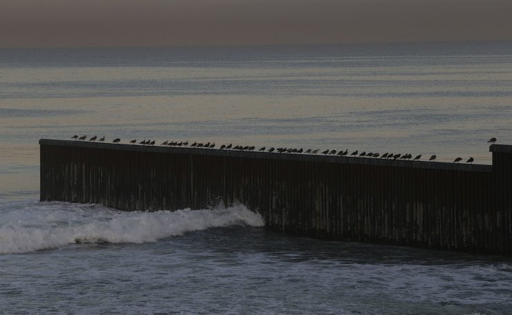 Birds perch on a barrier separating Mexico and the United States, where the border meets the Pacific Ocean, Saturday, Nov. 17, 2018. AP