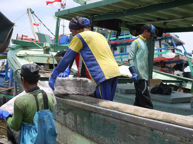 In this photo taken from Tegal, Indonesia in February 2016, a foreign fisherman trims fish for lunch. / Courtesy of Advocates for Public Interest Law