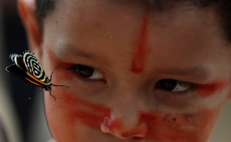 An Indigenous boy from the Mura tribe tries to look for a butterfly in Itaparana village near Humaita, Amazonas State, Brazil August 20, 2019. Picture taken August 20, 2019. Reuters