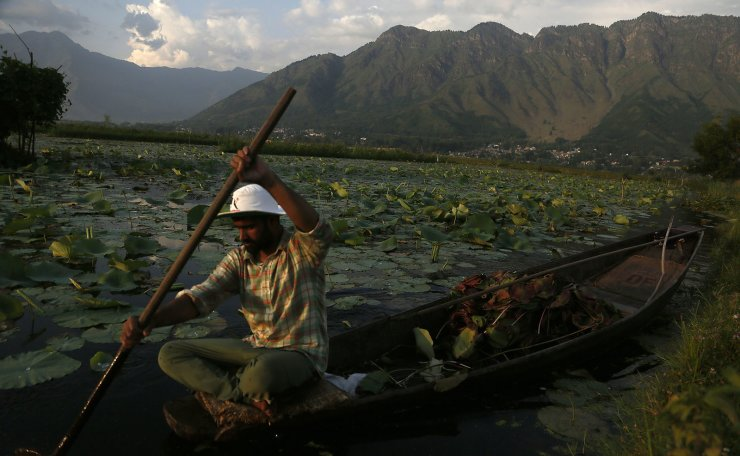 A Kashmiri boatman rows his boat at the Dal Lake on a hot summer day in Srinagar, Indian controlled Kashmir, Tuesday, July 16, 2019. AP