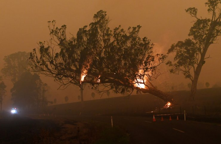 A burning gum tree is felled to stop it from falling on a car in Corbago, as bushfires continue in New South Wales, Australia Jan. 5, 2020. REUTERS