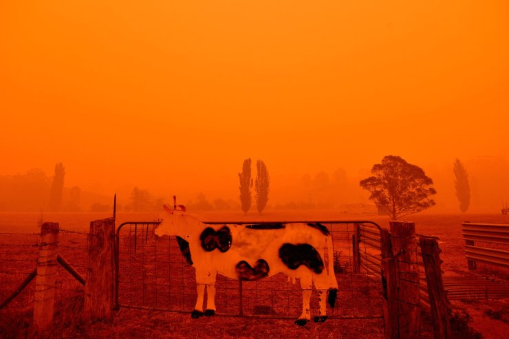 The sky turns red from bushfires in Bemboka, in Australia's New South Wales state on Jan. 5, 2020. AFP