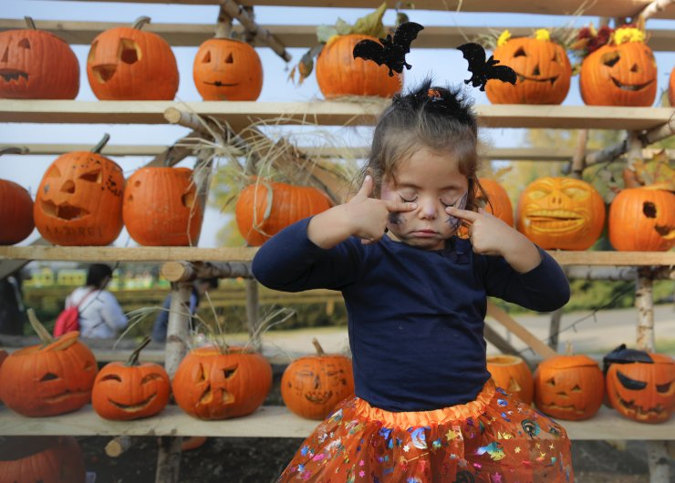 In this Saturday, Oct. 26, 2019 photo a little girl presses her eyelids after placing the pumpkin she carved on a shelf at The Halloween Pumpkin Fest in Bucharest, Romania. The Halloween Pumpkin Fest, 'the biggest pumpkin carving event in Europe', according to organizers, took place over the weekend in a popular park in the Romanian capital with thousands trying their hand at carving more than 30 thousand pumpkins ahead of Halloween. AP