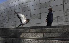 Life goes on in Korea amid coronavirus pandemic (Part 5)