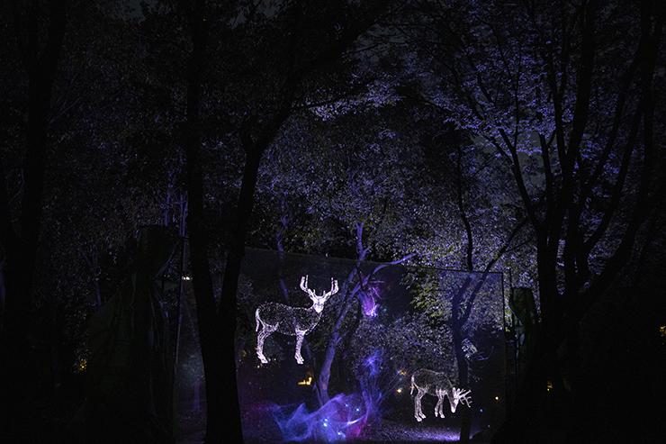 A cheongsa chorong (traditional Korean lantern) guides the way through Changgyeong Palace at dusk. Korea Times photo by Choi Won-suk