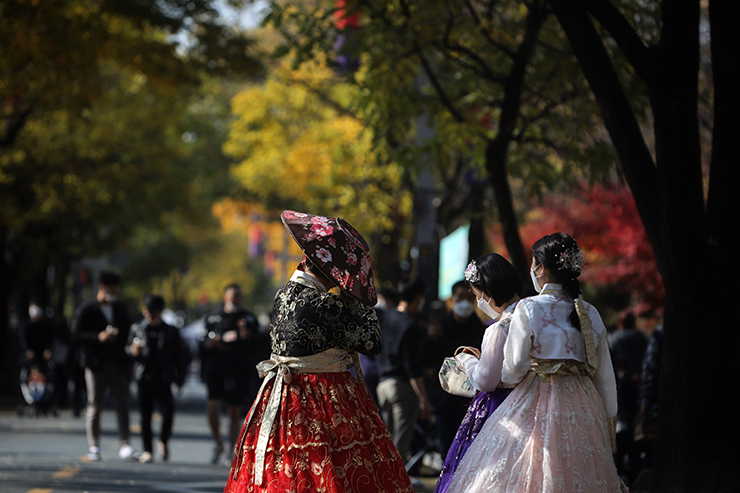 A woman in hanbok is seen near a gingko tree with its leaves turning yellow. Seen behind her is a traditional tiled roof. Korea Times photo by Choi Won-suk