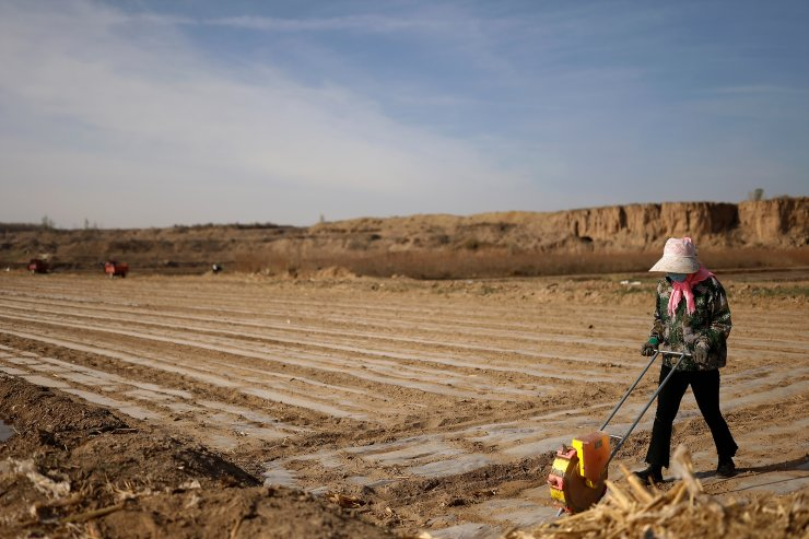 A worker uses a planter to plant corn seeds on Wang Yinji's land in a village near the edge of the Gobi desert on the outskirts of Wuwei, Gansu province, China, April 14, 2021. REUTERS
