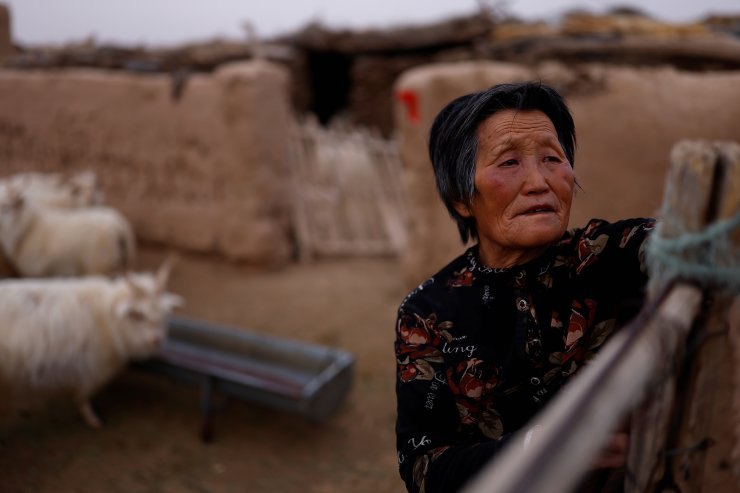 Ding Yinhua, 69, a shepherd, opens the gate of a pen for sheep and goats at her house in the Gobi desert in Minqin county, Wuwei, Gansu province, China, April 18, 2021. Tree-planting has been at the heart of China's environmental efforts for decades as the country seeks to turn barren deserts and marshes near its borders into farmland but some of the farmers in Wuwei have begun to lose hope after decades trying to subdue the deserts. Despite the tree-planting, pastures have deteriorated in recent years as a result of declining rainfall in the spring and summer, Yinhua said. 'It's just no good without rain. We don't have land so there's no other way: we just herd sheep. In 2015 and 2016, there was rain but since then there's been nothing, and you now have to wait until September,' she said. REUTERS