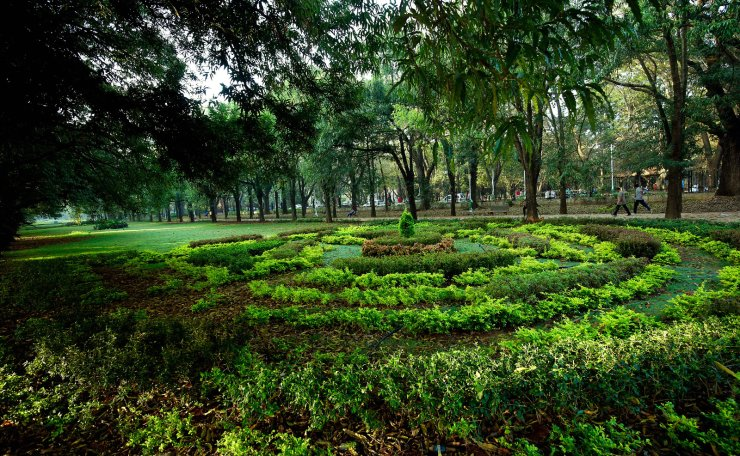People exercise amidst the green gardens of indigenous and exotic plants at Cubbon Park in Bangalore, India, 21 February 2019. The park forms a green lung area for Bangalore city. India scores badly in air quality ratings with 25 of the world's 50 most polluted cities located in India. EPA