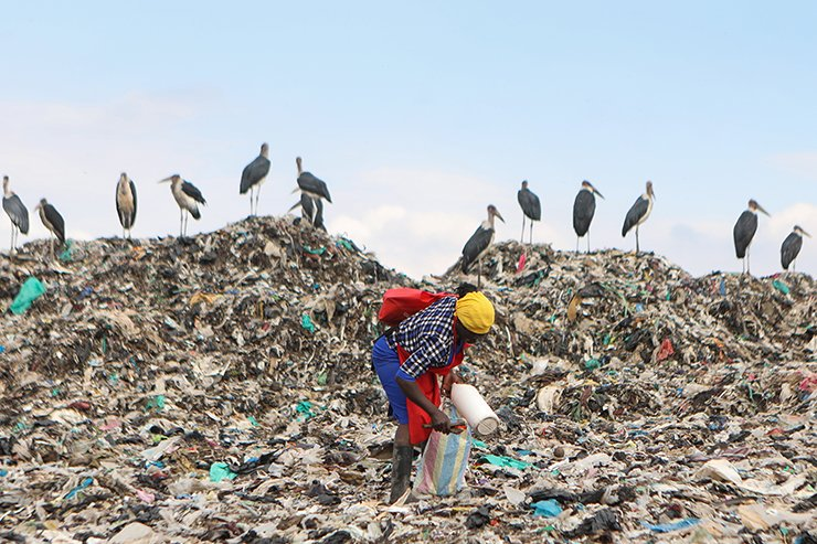 A woman (C), who scavenges for recyclable plastics for a living, collects plastic bottles next to Marabou storks who feed on the garbage, as she puts them in a sack at the Dandora dumpsite, before selling them for recycling in Nairobi, Kenya, 04 June 2019, ahead of World Environment Day. Air pollution and improving air quality in cities across the world is the theme of World Environment Day 2019, marked on 05 June 2019. EPA
