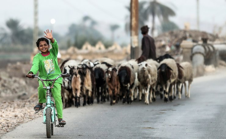 An Egyptian child waves in greeting as he bikes past a herd in the village of al-Nehaya, one of the poorest in the country, in the province of Assiut in central Egypt, on November 16, 2019. AFP