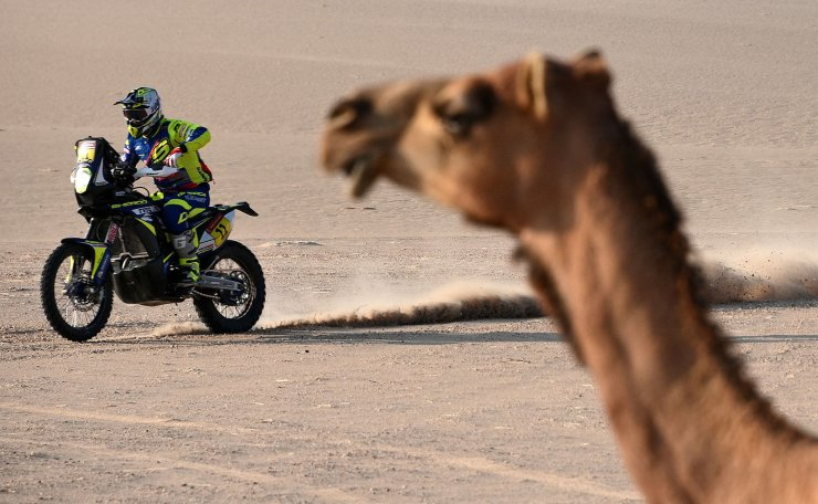 A biker rides past a camel as he competes during the Stage 10 of the Dakar 2020 between Haradh and Shubaytah, Saudi Arabia, on January 15, 2020. AFP