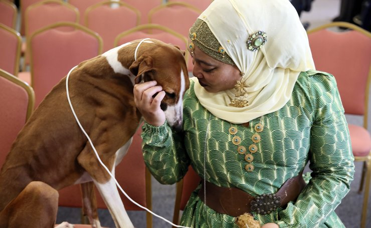 In this Tuesday, Feb. 4, 2020 photo, retired Philadelphia police officer Aliya Taylor poses with her Azawakh named Bahir at a Westminster Kennel Club news conference in New York. The Azawakh is a new breed to the Westminster show this year. There aren't many Muslims in the dog show world, and Taylor says she's never seen another handler wearing a hijab in the ring. Taylor and her dog aren't in the Westminster show this year, but hope to participate next year in America's most prestigious dog event. AP