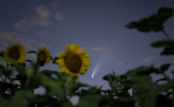 The Comet NEOWISE or C/2020 F3 is seen above a sunflower field near Grafensulz, Austria, 17 July 2020. The comet passed closest to the Sun on 03 July and its closest approach to Earth will occur on 23 July.  EPA