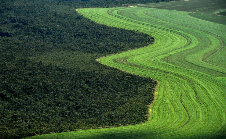 This file picture taken on May 29, 2019 shows an aerial view of an agriculture field next to a native Cerrado (savanna) in Formosa do Rio Preto, western Bahia State, Brazil. AFP