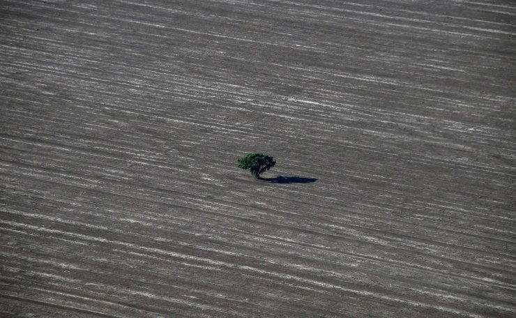 This file picture taken on May 29, 2019 shows an aerial view of an agriculture field next to a native Cerrado (savanna) in Formosa do Rio Preto, western Bahia State, Brazil. - Faced with growing pressure in 2020 for Brazil to put a stop to deforestation in the Amazon, the agri-food giants are increasing the checks on the origin of their products and say they are calling on the Bolsonaro government to enforce environmental legislation. The recent case of Brazilian meat giant JBS, the world's number 1 meat producer, accused in July 2020 by a consortium of investigative media of having illicitly sourcing cattle from ranches blacklisted for destroying the Amazon, has reinforced this pressure. AFP