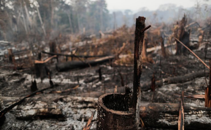A burned tract of the Amazon jungle is cleared by loggers and farmers near Mirante da Serra, Rondonia State, Brazil August 20, 2020. Reuters