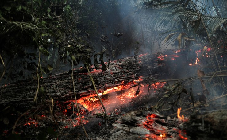A tract of the Amazon jungle is seen burning near Ouro Preto, Rondonia State, Brazil August 20, 2020. Reuters
