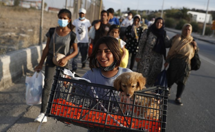 A girl carrying a puppy walks on a street as refugees and migrants from the destroyed Moria camp start to enter a new temporary camp near Kara Tepe, Mytilene, Greece, 16 September 2020. EPA