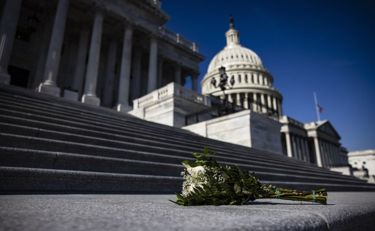 Roses have been left on the steps to the House of Representatives at the US Capitol building in Washington, DC, USA, 13 January 2021. EPA