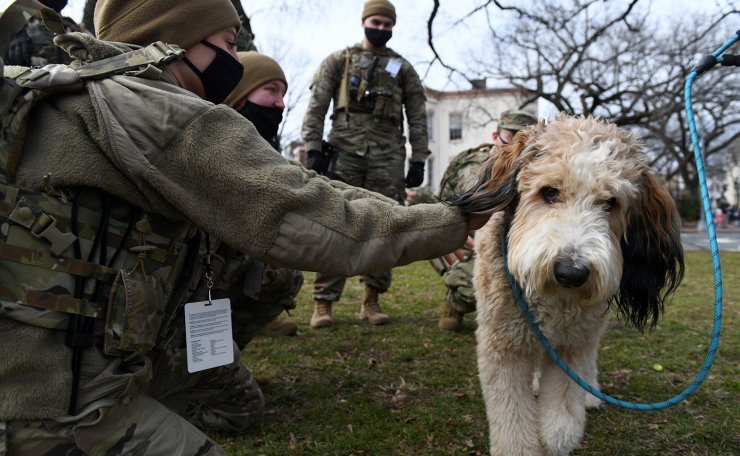 Officers from the National Guard pet a dog as they spend time with civilians at Lincoln Park in Washington D.C., days ahead of U.S. President-elect Joe Biden's inauguration, U.S. January 18, 2021. Reuters