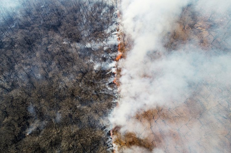 Wildfires rage near the village of Tavrichanka, 49km northwest of Vladivostok. The start of a fire season was declared in the region on April 15. For the last 24 hours, there have been registered 38 forest fires of more than 4,000ha in total area, along with 166 thermal anomalies. TASS