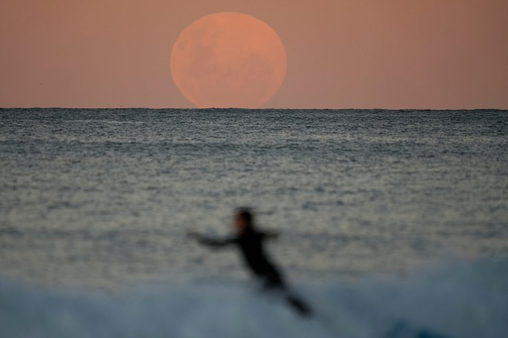 A surfer falls off his board as the moon rises in Sydney Wednesday, May 26, 2021. A total lunar eclipse, also known as a Super Blood Moon will take place later tonight as the moon appears slightly reddish-orange in colour. AP