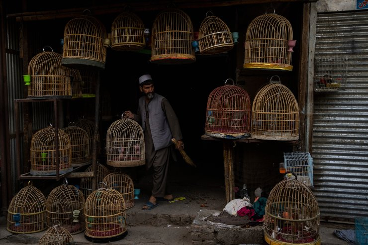 An Afghan bird seller holds a cage at a bird market in Kabul's Old City, Afghanistan, Tuesday, Sept. 14, 2021. AP