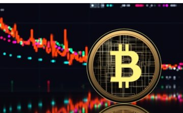 'Musk's disruptive impact on crypto-assets to be limited'