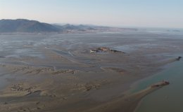 Korean tidal flats to join UNESCO Natural World Heritage list