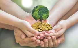 Climate crisis and finance, what should we tackle?